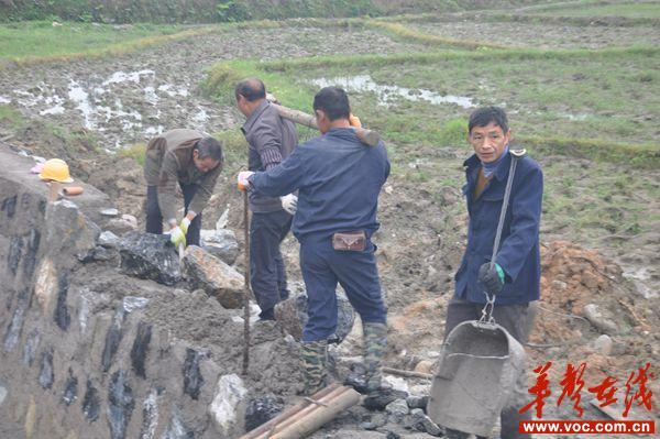 兴修水渠.jpg