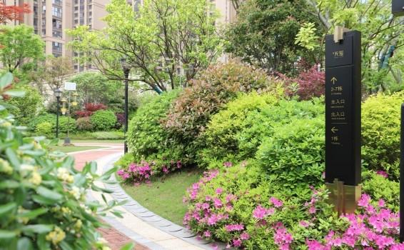 园区2.jpg
